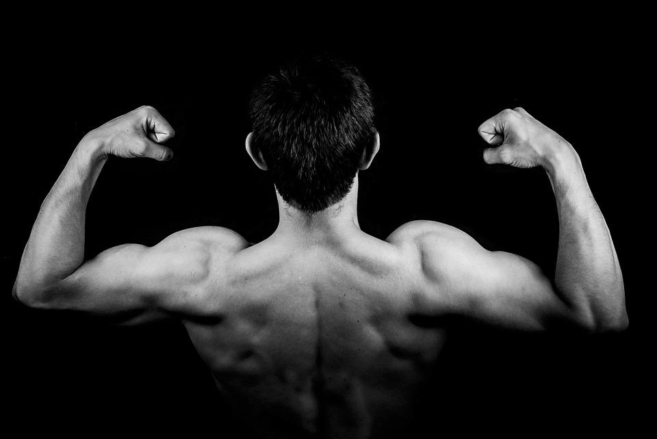 Musculation : quels haltères utiliser ?